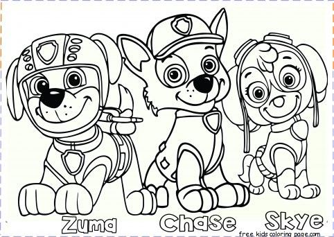 Paw Patrol Coloring Pages Printable Paw Patrol Coloring Pages Zuma Chase Skye For Kid Paw Patrol Coloring Paw Patrol Coloring Pages Cartoon Coloring Pages
