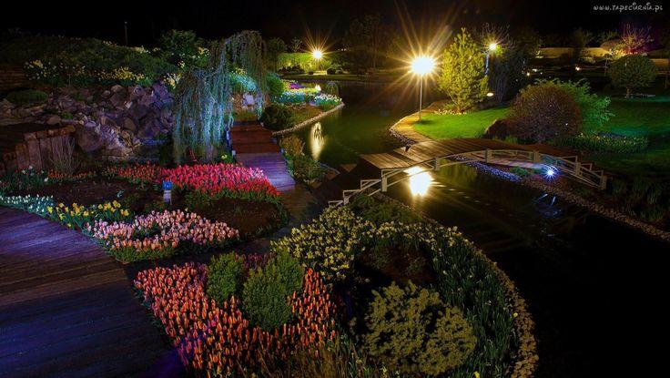 Ogród, Kwiaty, Mostek, Noc, Lampy