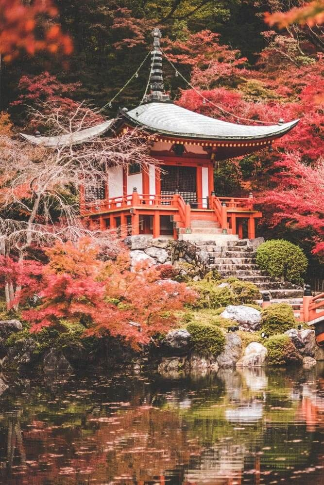 10 Best Things to do in Kyoto, Japan