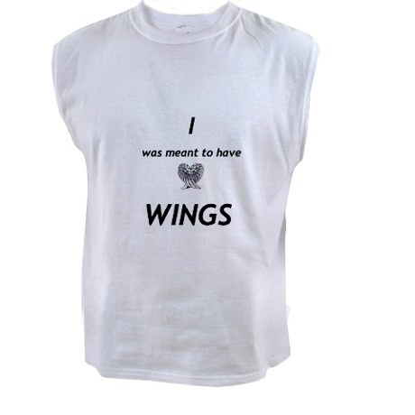 Maximum Ride - I was meant to have wings   (i want it!!) but this was Ella's crazy wing obsession quote, though....