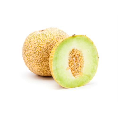 Altınbaş, Golden, Galia Melon