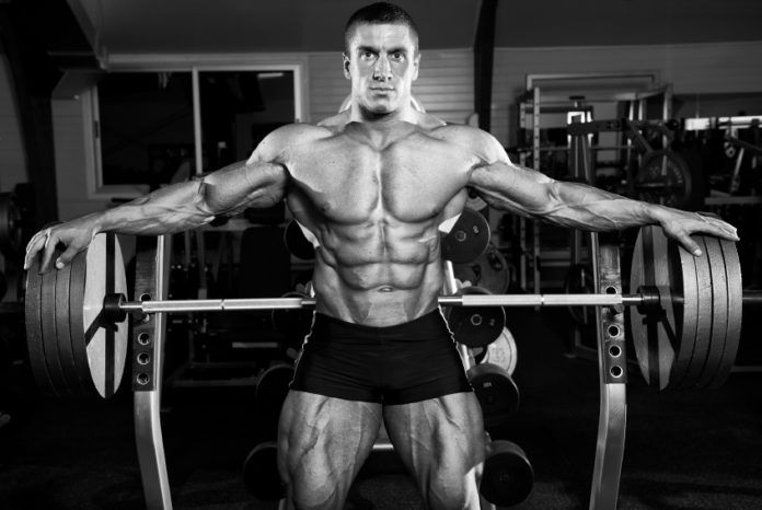 Build Big Muscles with Weight Training | Fitnesscheckpoint.com