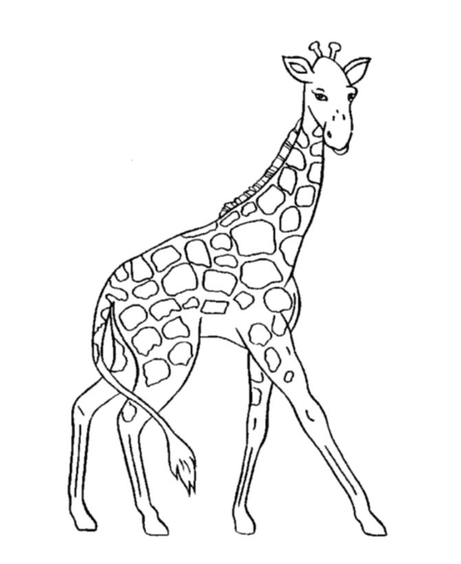 67 best Coloring Pages images on Pinterest Coloring sheets