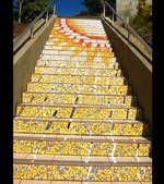 Situé sur la 16ème avenue dans San Francisco aux États-Unis, Projet artistique ayant été pensé et réalisé sur 2 1/2 années, cette fabuleuse mosaïque a été inaugurée au mois d'août 2005.Contenant plus de 75 000 fragments de 2 000 tuiles de toutes les couleurs, cette mosaïque possède aujourd'hui 163 tableaux différents disposés sur chacune des marches. Ce somptueux travail collectif est composé de thèmes floraux, animaliers et se terminant par un immense soleil,