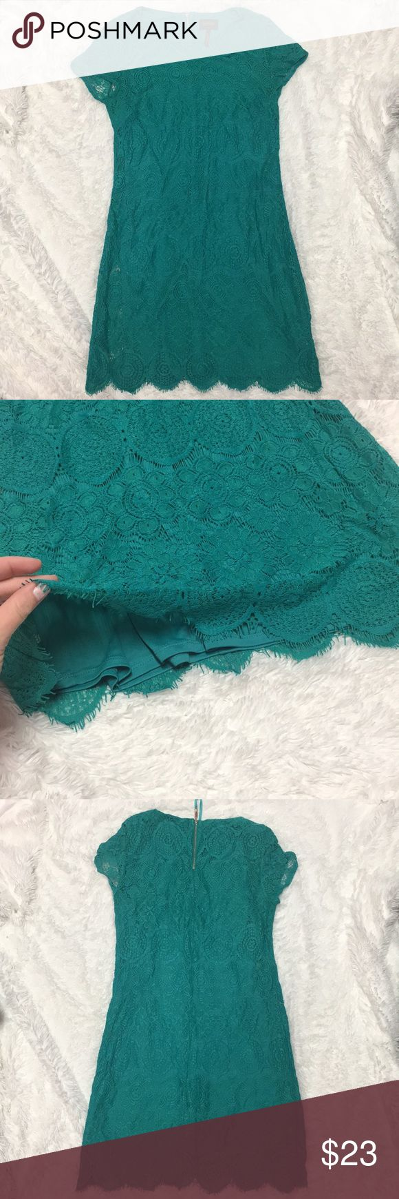 Laundry by Shelli Segal Lace Dress, Size 4 Laundry by Shelli Segal Lace Dress, Size 4. Work once- in excellent condition. Comes from smoke-free home! Laundry By Shelli Segal Dresses Mini