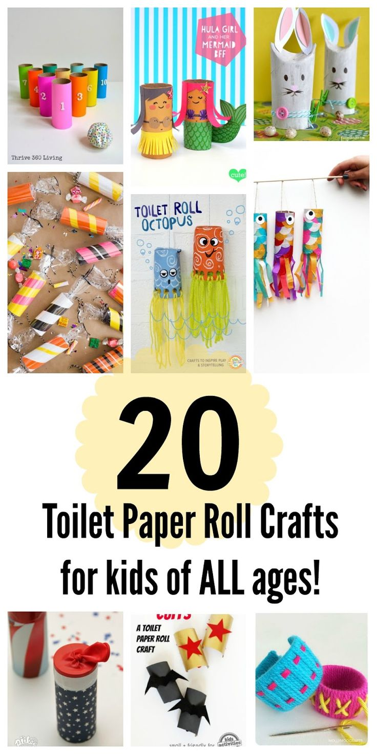 20 Toilet Paper Roll Crafts For Kids Of All Ages