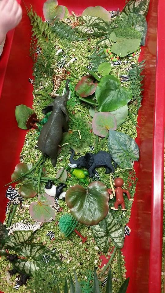 Jungle sensory table