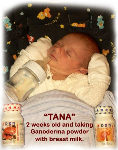 Tana two weeks old  baby and taking Ganoderma powder with breastmilk.