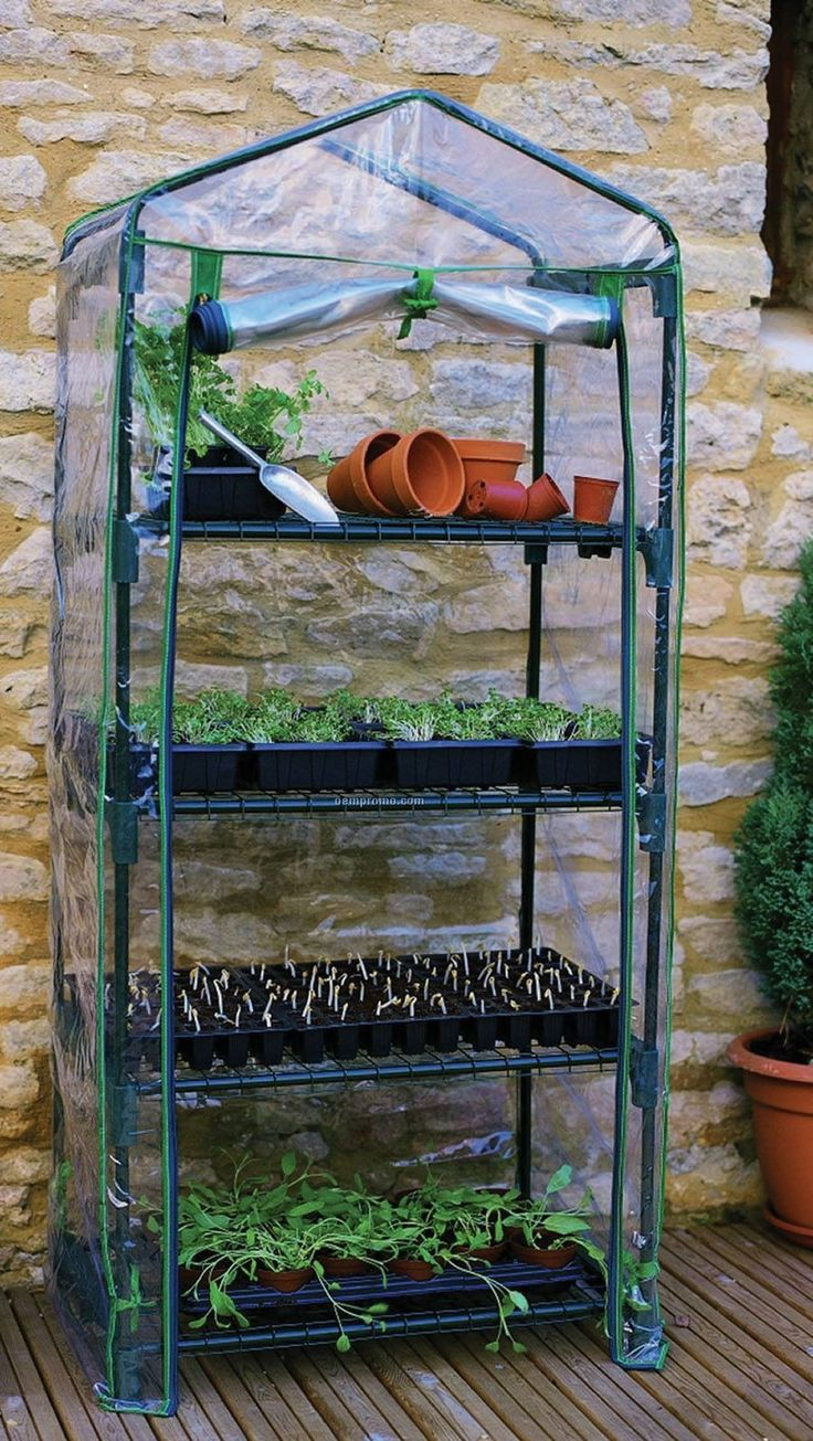 "New Shelf 63"""" Greenhouse w/ PVC Cover Hot House Shelves Growing Flowers Garden"