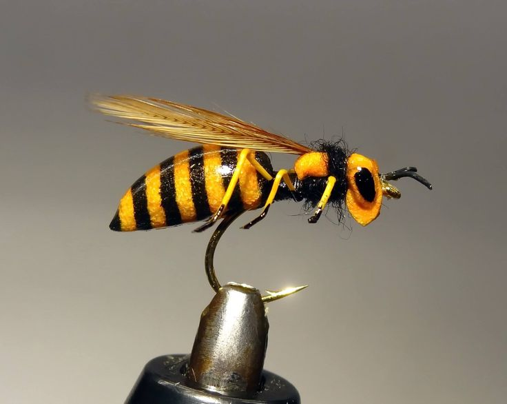 FLOATING Realistic Wasp. ( foolproof )  By Dmitri Tseliaritski