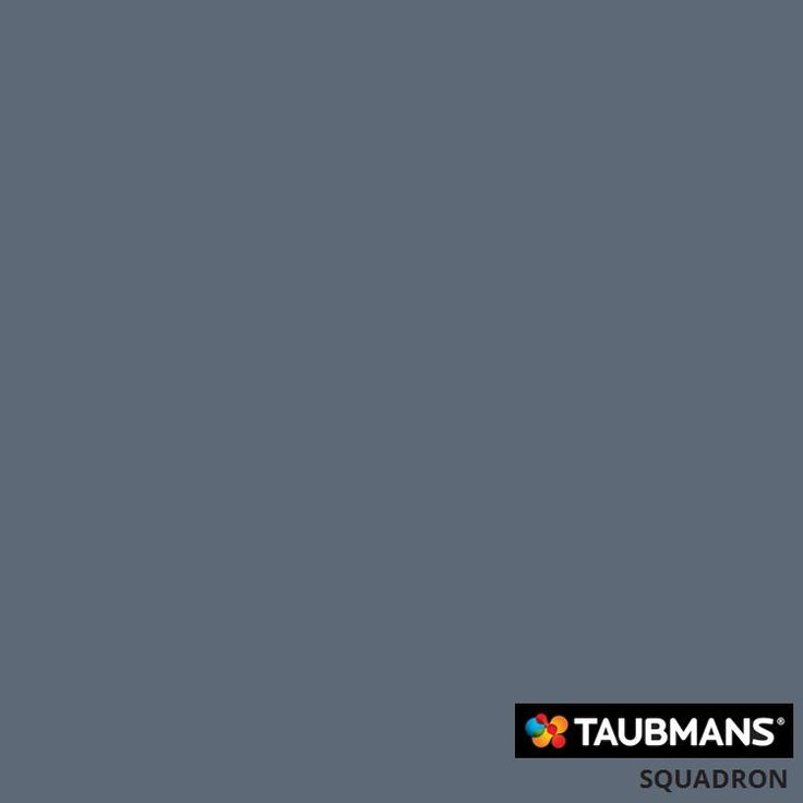 Possible Feature Wall - Taubmans Paint: Squadron