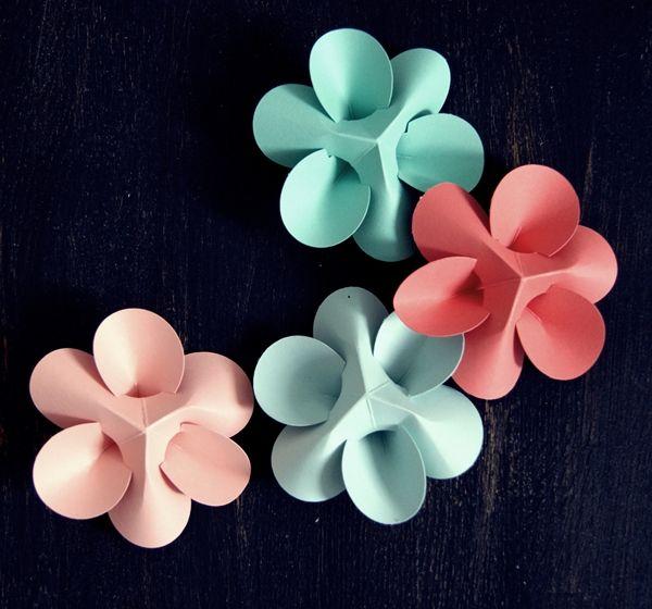 Die Besten 17 Bilder Zu Blumen Auf Pinterest Blume