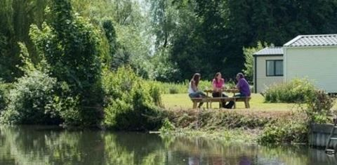 Lee Valley Caravan Park,  Hoddesdon, Herefordshire, England. Fishing. Walks. Cycling. Holiday. Travel. Glamping. Camping. Campsite. Family.