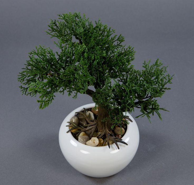 The 25+ Best Ideas About Künstliche Pflanzen On Pinterest ... Bonsai Baum Dekoidee Indoor Garten