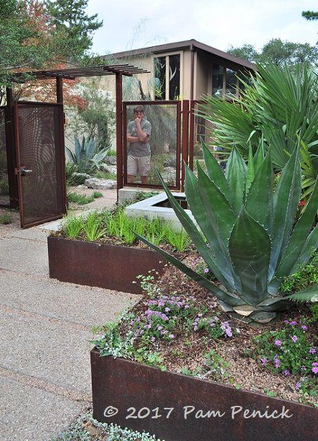 die besten 25 yucca palme ideen auf pinterest zimmerpflanze palme palmen garten und. Black Bedroom Furniture Sets. Home Design Ideas