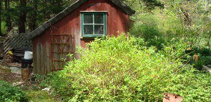 Author Rosemary Harris's Connecticut garden  Garden Design  Calimesa, CA