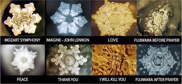 Through Dr. Emoto's work with the consciousness of water, he brought new understanding to the power of thought, vibration, and our collective influence on the quality of our lives and creation. It was Dr. Emoto's work that catalyzed the inception of Go Gratitude so many years ago, inspiring us to see the hidden messages in water, note the fractal nature of creation and embark on a path of grateful living. His offerings have influenced the paths and lives in multitudes of beings, and w...