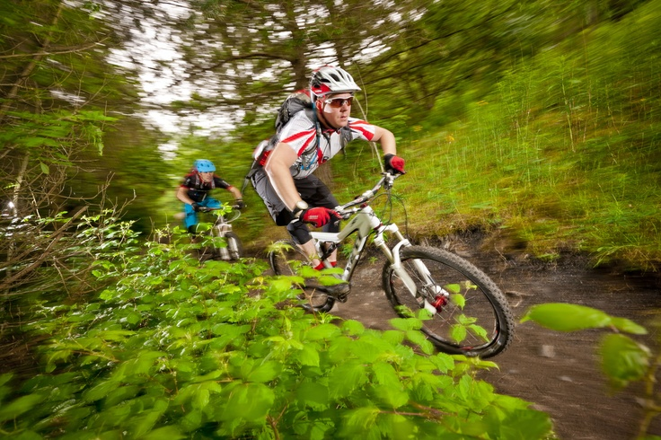 Cwmcarn Downhill mountain biking trail in South Wales
