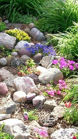 17 best images about rock garden bliss on pinterest for Ornamental grasses that stay green all year