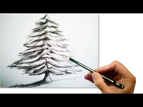 (1) How to Draw a Realistic Christmas tree with pencil | #Draw step by step - YouTube