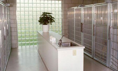 33 Best Floor Plans Veterinary Hospital Design Images On