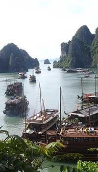Un viaggio in Vietnam regala a chi sceglie di avventurarsi nei suoi territori un'immersione totale nella cultura di un paese dalla tradizione millenaria.    Numerosi templi, rimasti abbandonati per decenni nella vegetazione, ritrovano ora la luce in attesa di essere riscoperti dai visitatori di tutto il mondo.