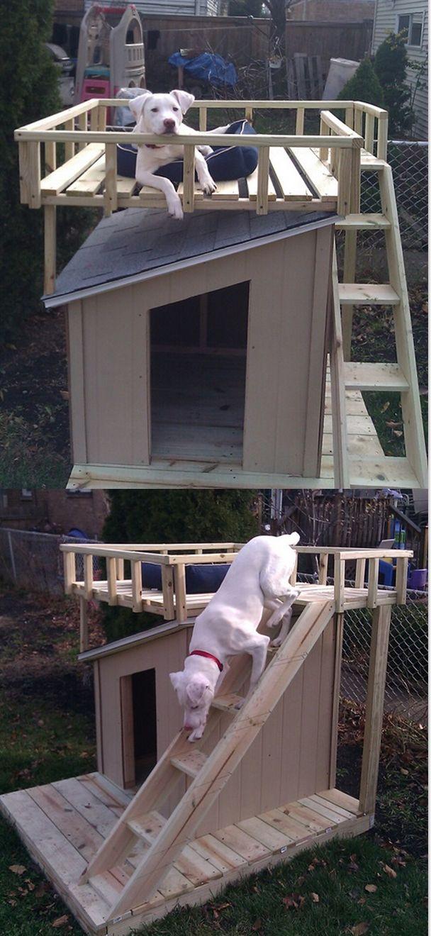 double story dog house