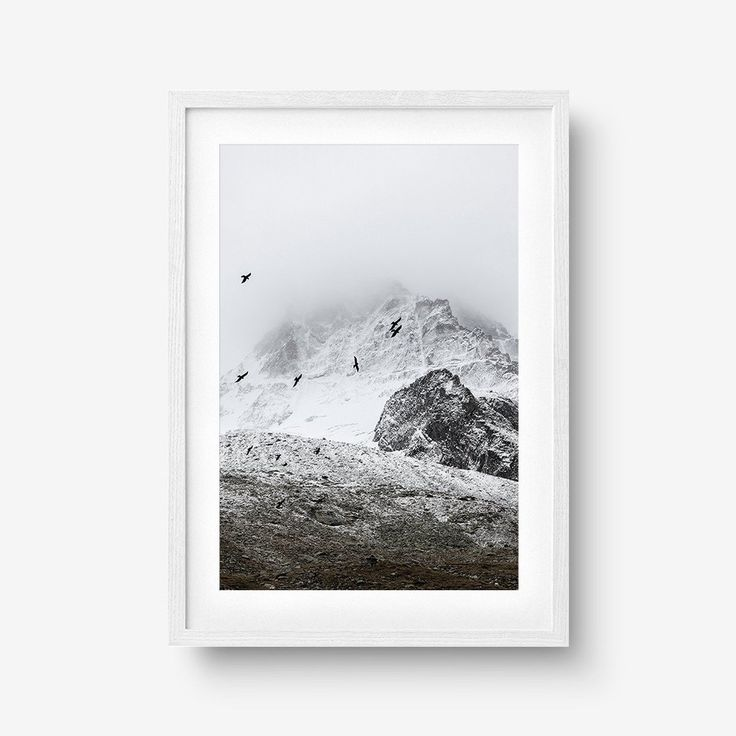 Birds, Fog, Mountain Art Print