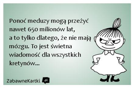 Meduzy...
