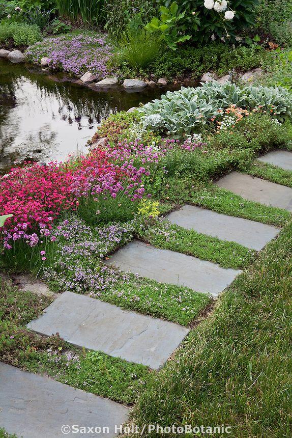 171 best garden yard ideas images on pinterest shrub for Stone stepping stones for garden paths