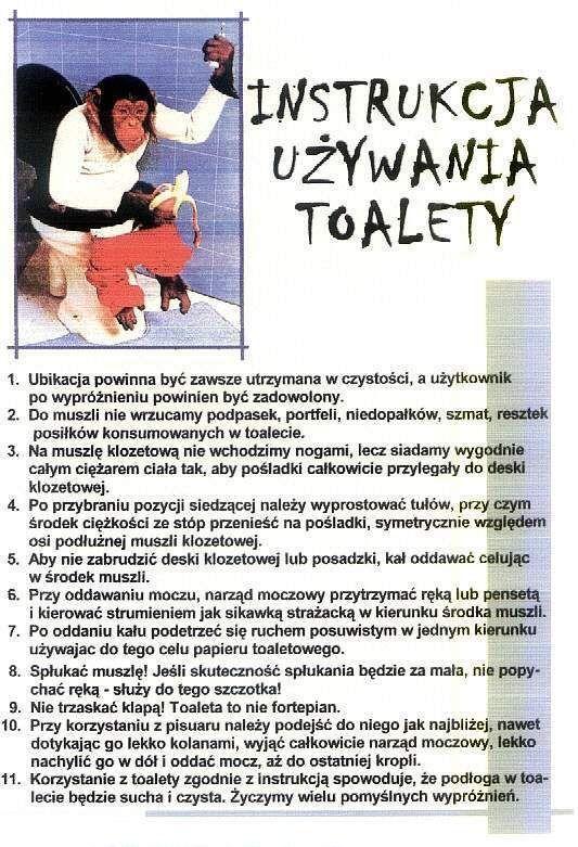 uzywanie_toalety.jpg (533×781)