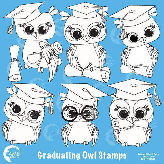 80%OFF Graduation Owl Clipart Owl Digital by AMBillustrations