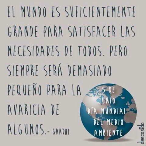 Escuelas Viatorianas Evangelizadoras . QUERBES (EVE.Q): DÍA DEL MEDIO AMBIENTE 2014