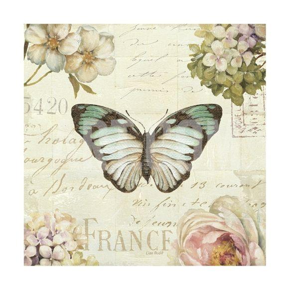 (Original as re-pinned) Marche de Fleurs Butterfly II Giclee Print by Lisa Audit at Art.com
