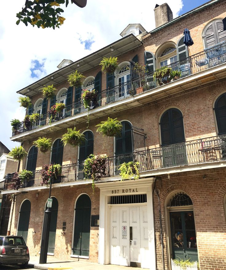 24 best nola bound images on pinterest louisiana viajes for Tattoo shops french quarter new orleans