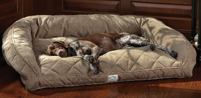 Dog Couch / Deep Dish Dog Bed. #dogs #pets #beds