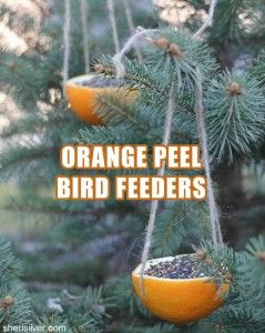 1. hollow out half an orange 2.Poke one hole in each side 3.  Attach  string from one hole to the other 4. fill with bird seeds