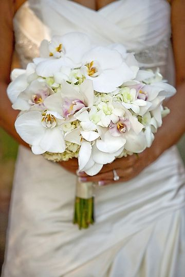 white orchid bouquet - i like the hints of purple in some of the insides of the petals (is there a name for that?)