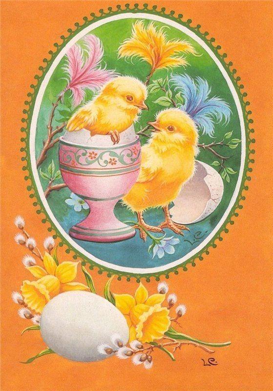 Картинки великолепного, пасхальные открытки цыплята