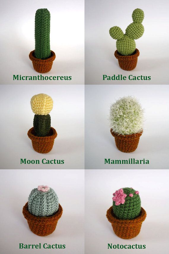 Realistic crocheted cacti and succulents by LunasCrafts on Etsy