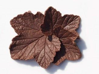 Slik lager du sjokoladeblader og blomster! (kakepynt)
