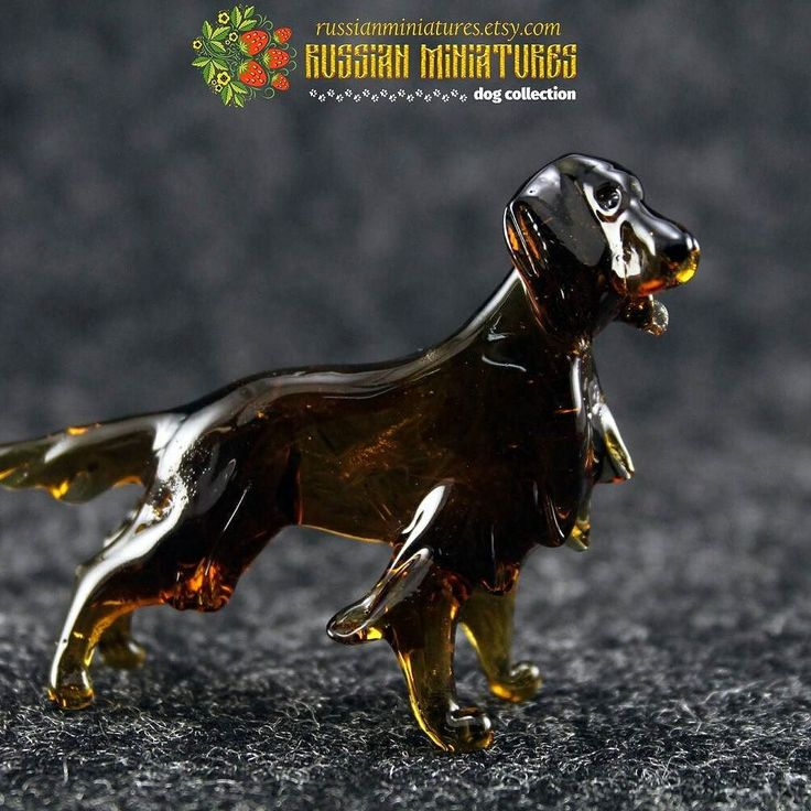 Color Glass #irishsetter Figurine  Check out here: https://goo.gl/mZ3NZ2  Dogs collection: https://goo.gl/RByga4  #russianminiatures #doglove #dogsofinstgram #animalsofinstagram #redsetter #setter  #dogsarefamily #instapup  #doggydaycare #campingfun #campingtrip #campinglife #camping #campingtime #puglife #pet  #doglover #irishred #dogs_of_instagram #dogslife #settersofinstagram #dog #puppy #instapet  #puppies #puppydog #puppylove