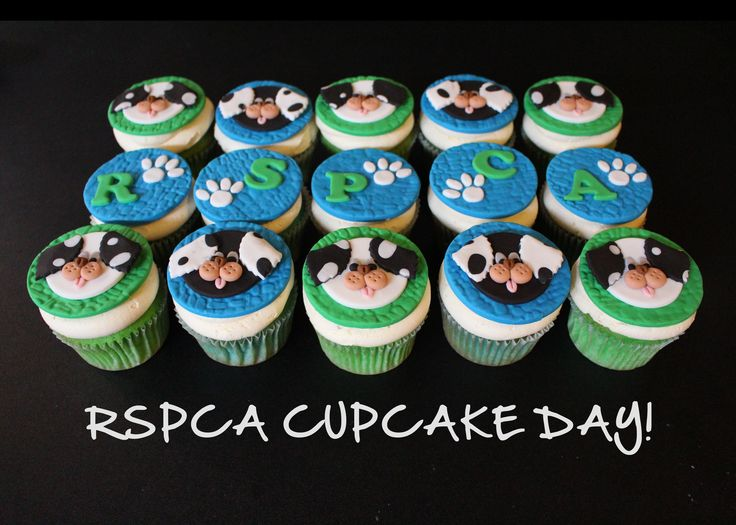 Vanilla cupcakes made for the RSPCA Cupcake Day – a couple of days early! ;p   Handcrafted by Little Creations By Rose  :  www.facebook.com/LCByRose