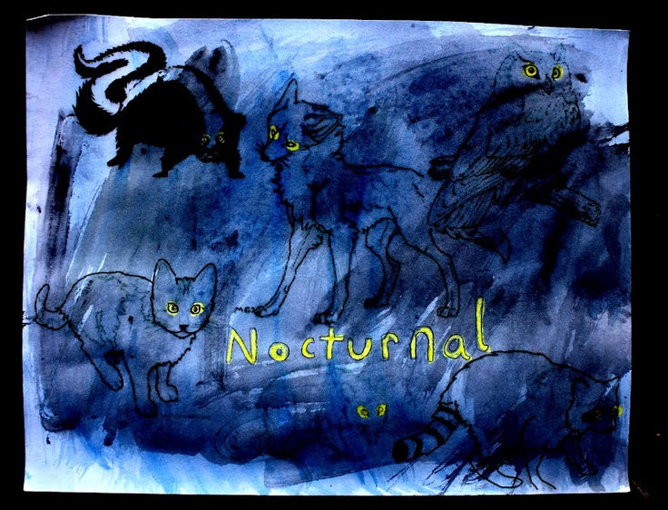 Nocturnal animals: Animals, Animal Projects, Watercolor Resistance, Watercolors, Nocturnal Animal, Fun, Water Colors, Animal Watercolor, Art Projects