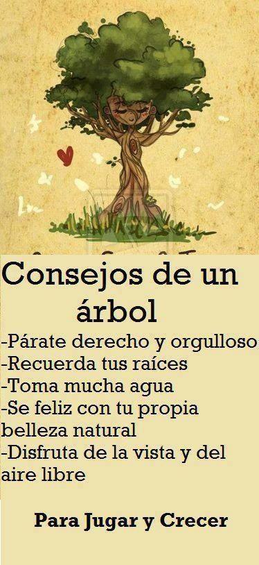 Estos son los consejos para un árbol. Crea los consejos para otros seres u objetos. Por ejemplo un pájaro, un boli, unas zapatillas...