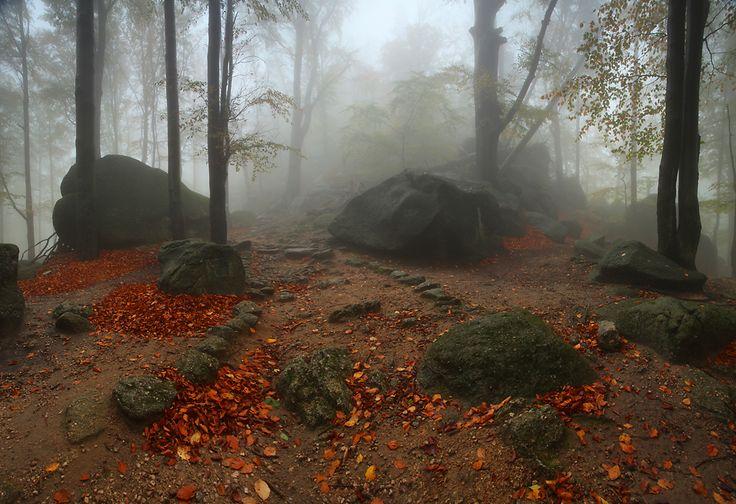 Spacer wśród głazów na Przełęczy Żarskiej, Karkonosze