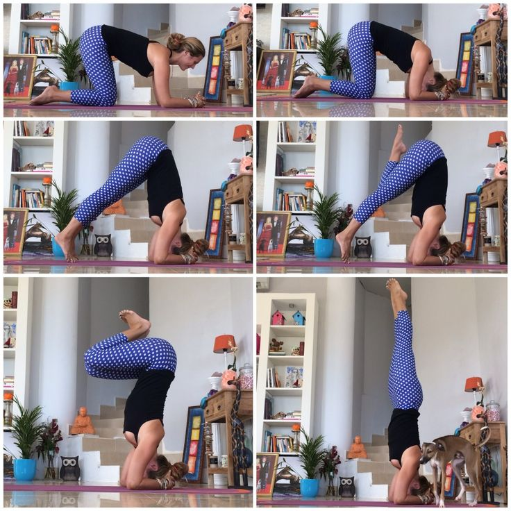 How to properly do a headstand in yoga.