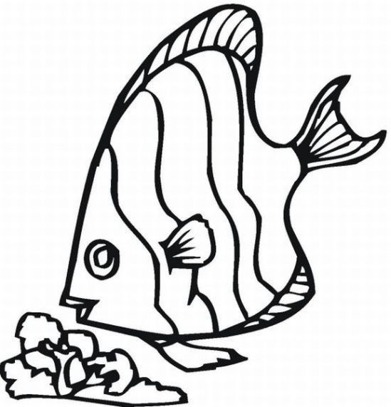 coloring pages fish ocean - photo#48