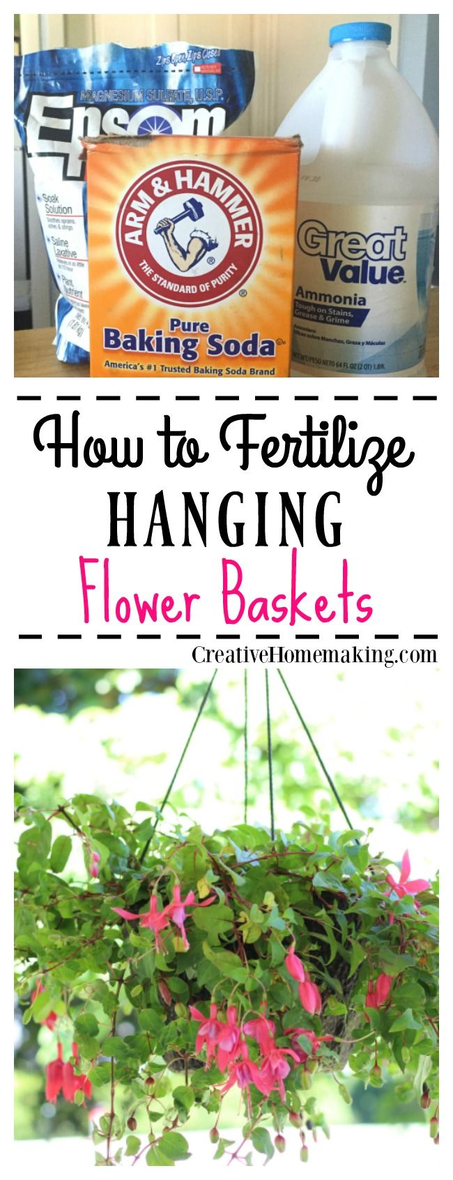 How to Plant a Professional-Looking Hanging Flower Basket