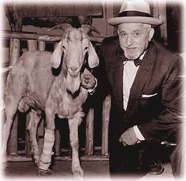 Chicago Cubs Curse(s)- Billy and his goat!
